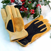 Winter Touch Gloves - LADIES