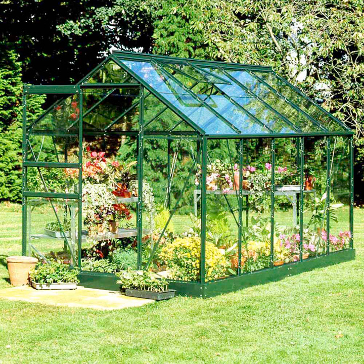 Popular 610 Green Horti Glass Greenhouse