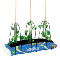 Tomato Growth Kit