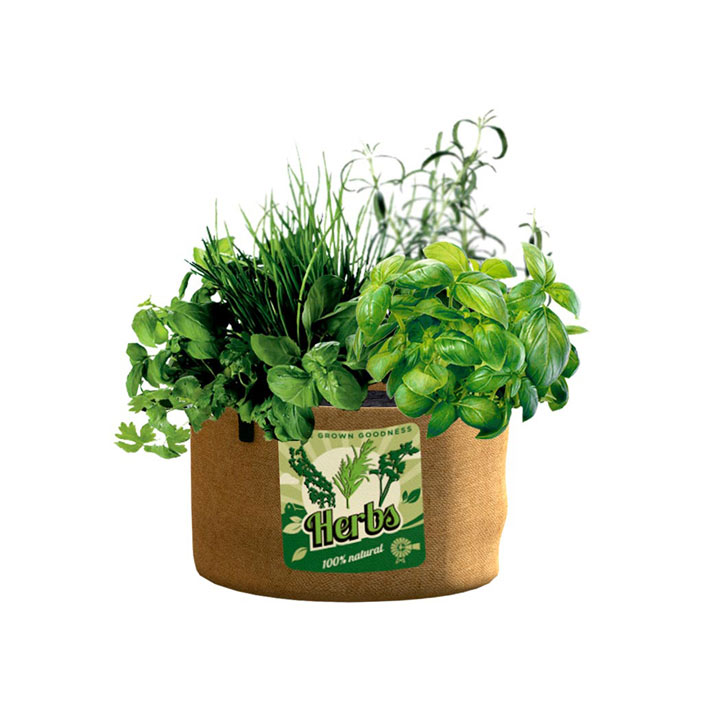 Vintage Herb Planters