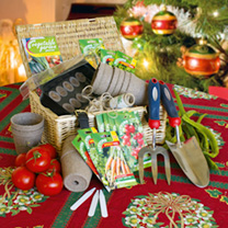 Garden Vegetable Hamper Gift Set