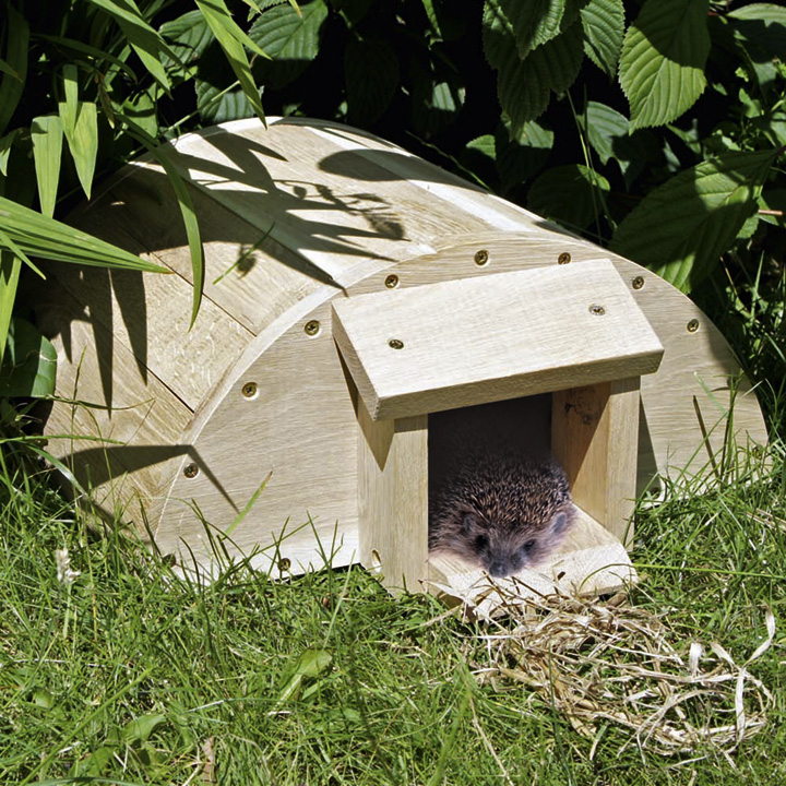 Build A Hedgehog House
