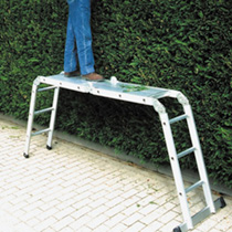 Multi-purpose Folding Ladder