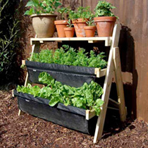 Ladder Allotment - 3 Tier Freestanding
