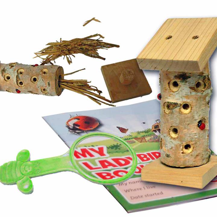 Minibug Ladybird Tower