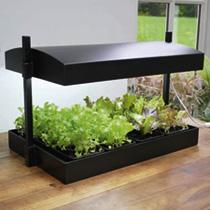Grow Light Garden & Self Watering Tray