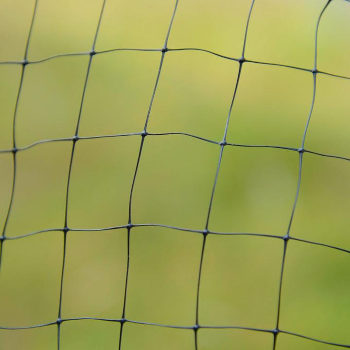 Butterfly Netting