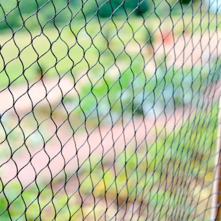 PN2 Superior Bird Net