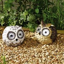 Owl Spotlights