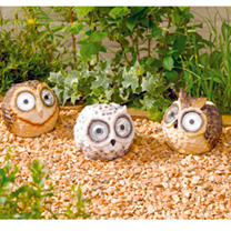 Bright Eye Owl Spotlights