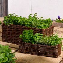 Window Box Planting Bag and Natural Willow Surround