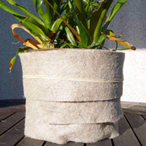 Biodegradable Plant Blanket - Biofilia