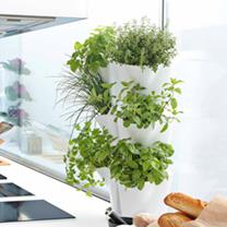 'Minigarden' Corner Planter