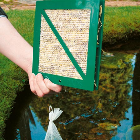Refill Pond Pads