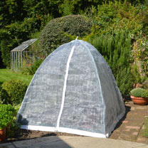 Popadome - Insect Cover