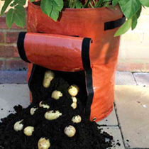 Easy-harvest Patio Potato Planters