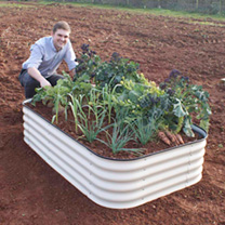 Original Veggie Raised Bed