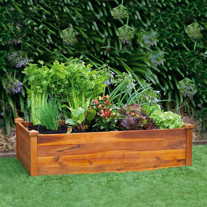 Wooden Raised Bed