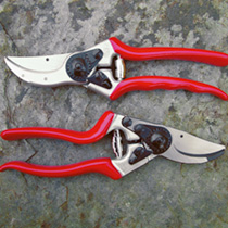 Felco Model 2 Secateurs