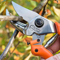 Anvil Secateurs Curved Blade