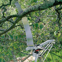 Telescopic Pole Lopper and Pruning Saw