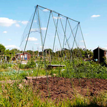 Easy Vegetable Grow Frame - 2.4 x 2.4m