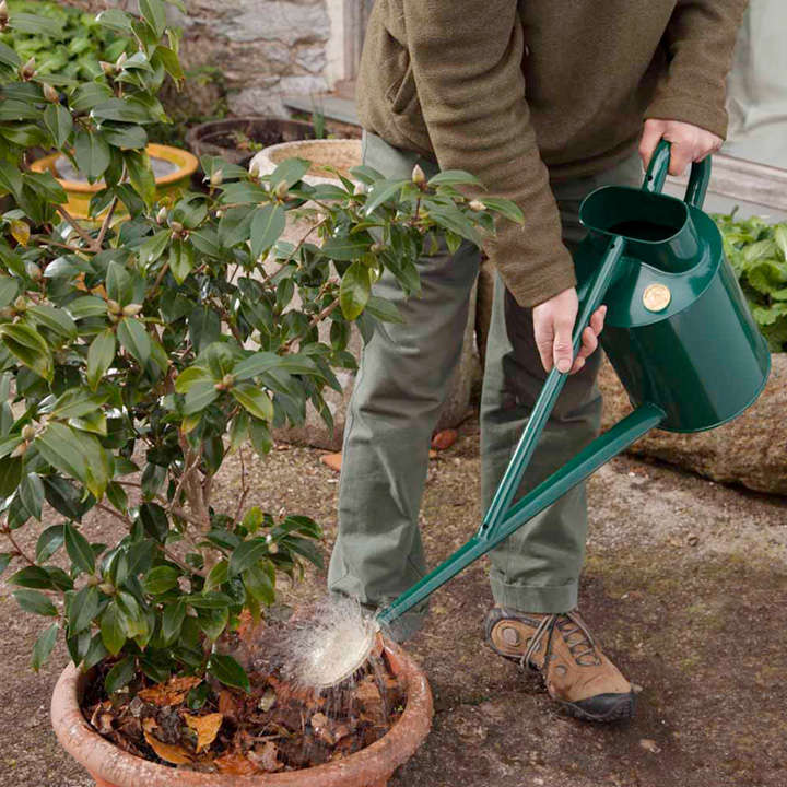 Haws professional long reach watering can dobies Long reach watering can