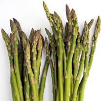Asparagus Seeds - Ariane F1