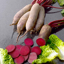 Beetroot Seeds Continuity Duo Pack