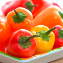 Pepper (Sweet Mini) Plants - Snackbite