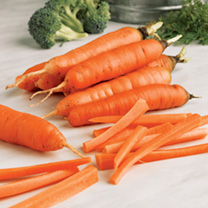 Carrot Early Nantes 5 Seeds