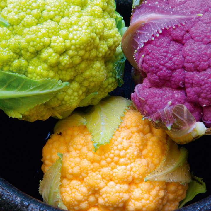 Cauliflower Plants - Tri-colour Collection
