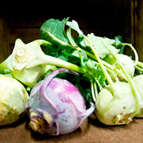 Kohl Rabi Seeds - Purple and White Mix