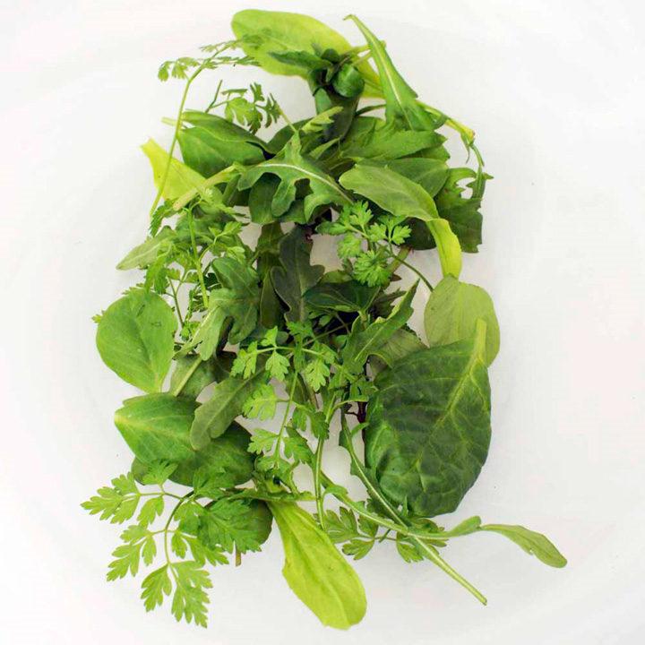 Leaf Salad Seeds - French