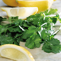 Coriander Seeds - Lemon