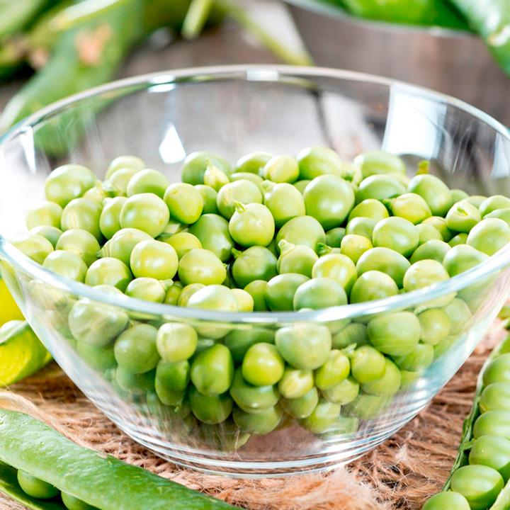 Pea Plants - Petit Pois