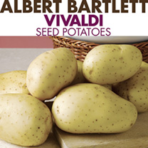 Seed Potatoes - Patio Potato Growing Kit