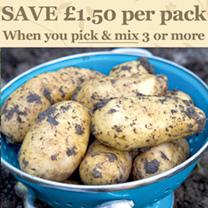 Seed Potatoes - Charlotte 1kg (Salad)