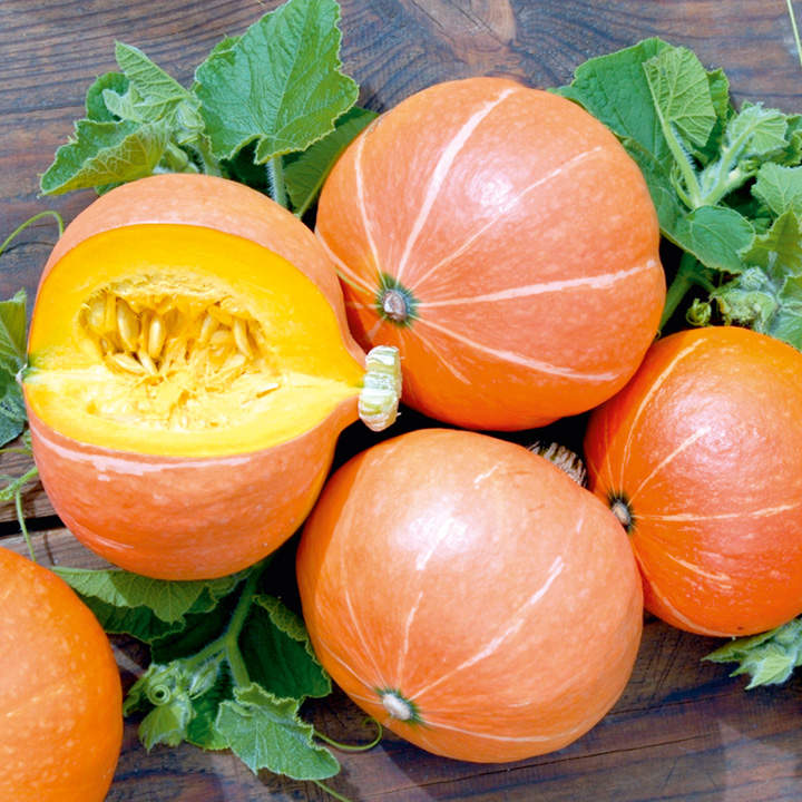Pumpkin Seeds - Justynka