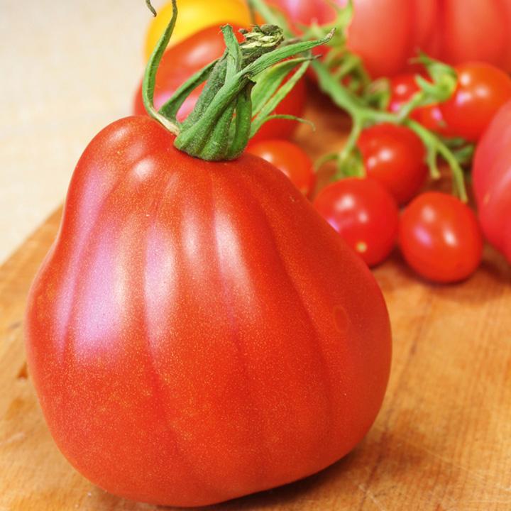 Tomato Seeds - Corazon F1