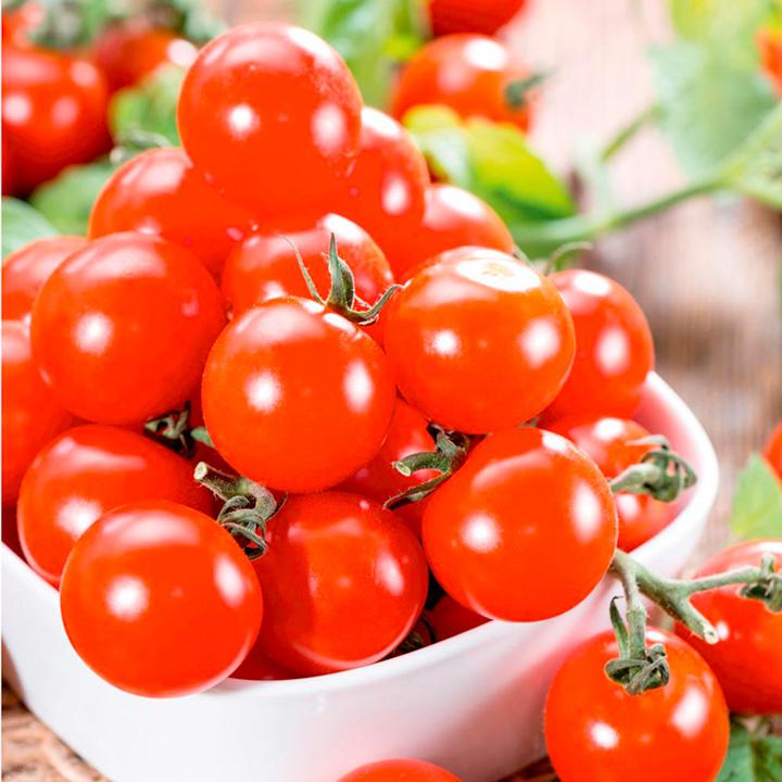 Grafted Tomato Plants - F1 Crimson Cherry