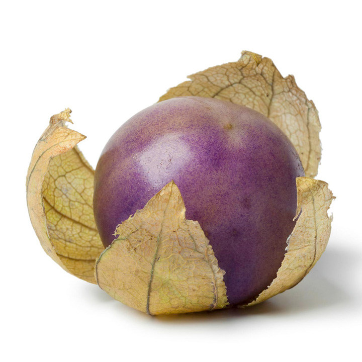 Tomatillo Plants - Purple