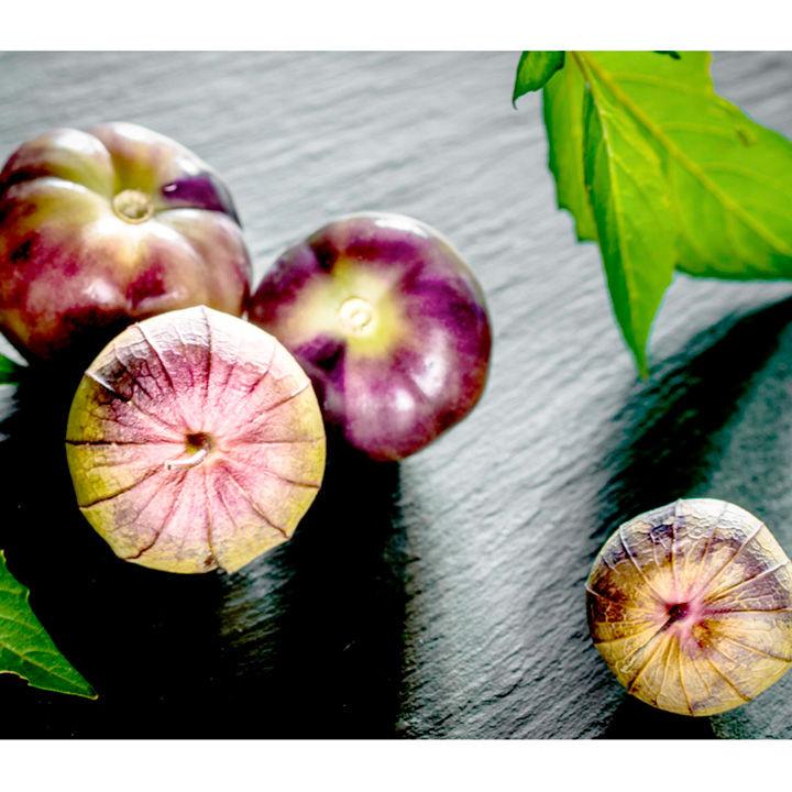 Tomatillo Seeds - Purple