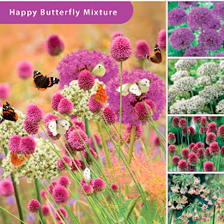 Happy Butterfly Flower Bulb Mixture Plus Bag