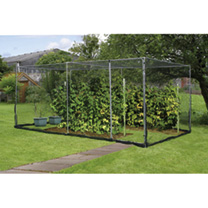 Economy Fruit Cage with Door - Galvanised