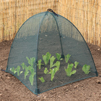Net Cloches - Large