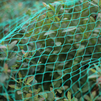 Plants & Plant Care Green Netting