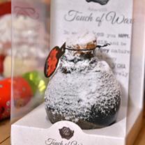 Amaryllis Wax Bulb - Black/snow coating