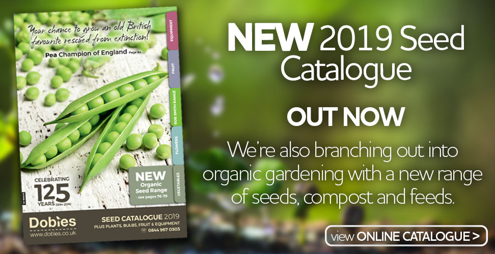 New 2019 Seed Catalogue