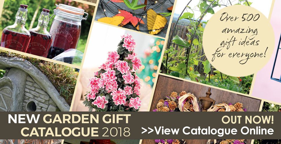 dobies gifts catalogue online